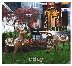 Holidynamics Indoor/Outdoor Deer With LED Lights Set of 2 (Christmas) with detail