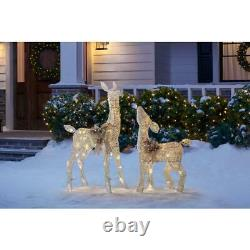 Home Accents LED Lighted Deer & Doe, Set of 2 Christmas Holiday Lawn Yard Decor