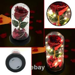 Led Light Red Rose Flower Gift Wife Husband Girlfriend Birthday Anniversary Xmas